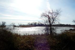 Marumsco Creek