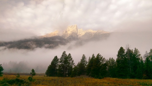 Grand Teton National Park - Fog - Cloud Layer - Mountain - Lupine Meadows